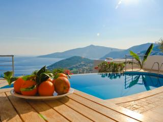 Ipek (Free Return Transfer or Car Hire), Kalkan