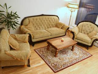GUEST APARTMENT IN CENTER. 2-ROOMS AND WITH SAUNA, Tallinn