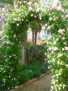 the rose arch leads you into the garden