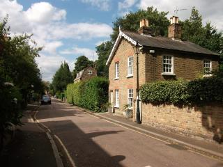 Richmond Upon Thames Cottage with Garden, Richmond-upon-Thames