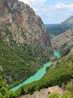 Discover the wild Provence