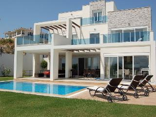 Spring Villa One with it's own jacuzzi & pool, Ilica
