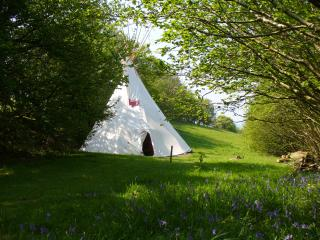 Tipi at Mid Wales Tipis, Machynlleth