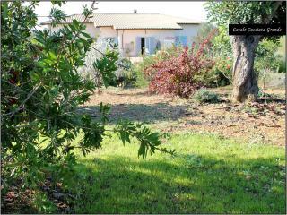 Appartamento autonomo in bellissima villa, Pescia Romana