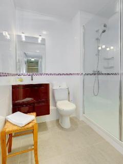 Modern shower-room