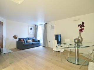 Beautiful apartment by the pier on River Thames, London