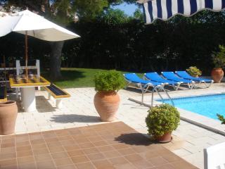 Villa 11 Flor, Sant Climent