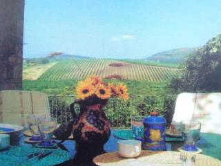 Wonderful Tuscan villa in Greve Chianti, Greve in Chianti