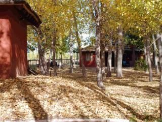 Cabañas El Bosque, Cabaña 2, Villa 25 de Mayo, San Rafael