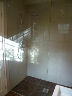 Downstairs wet room has walk in shower