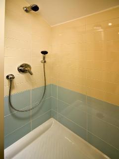 Main power shower