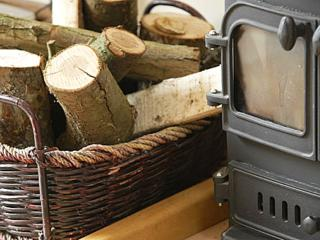 Cosy log burning stove