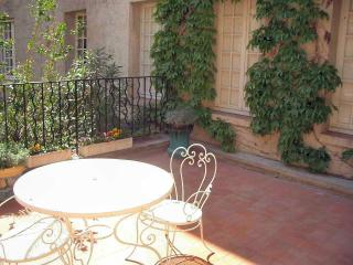 Spacious, tranquil apartment with delightful terrace located a stone's throw from the Pope's Palace in Avignon