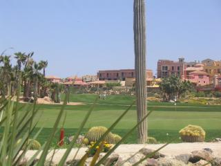 18th Green on Desert Springs Golf Course