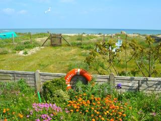 Beach garden extending down to the sea