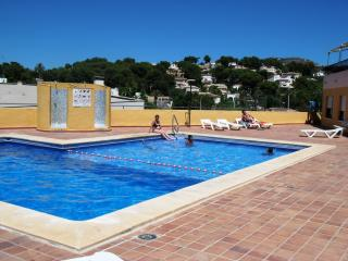 The Pool has a Large Shallow area for Smaller Children & Plenty of Loungers in Summer