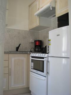 Cuisine : plaque de cuisson, four, lave-vaisselle, micro-ondes, frigo avec congélateur