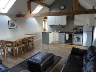 An open plan living area with vaulted ceilings, wood burner and flat screen TV with free sat and DVD