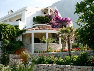 Villa Margitta, Drasnice