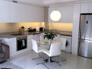Modern kitchen fully fitted with top end appliances