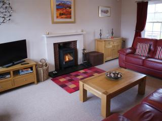 Sitting room with new wood burning stove