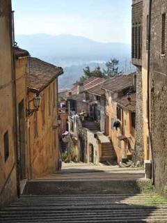Old town, Palestrina (the street of steps where Altavista's owner lives).