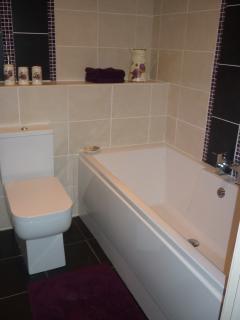 The modern en suite bath/shower room for master bedroom