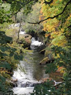 Salmon leap, Buchanty Spout, near Crieff