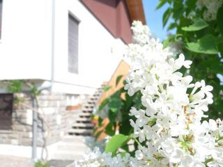 B&B Casa sul Lago - appartamenti, Levico Terme