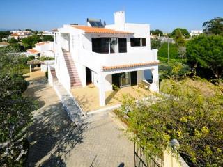 Villa aerial view 1