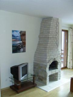 Fireplace sample of 1 bed apartment