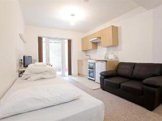 Bright family studio in Swiss Cottage, London