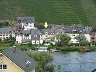 Spacious Holiday Home Zell Merl Mosel