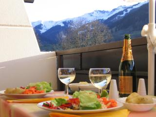 Maria Alm Studio Apartment: Skiing, hiking, biking