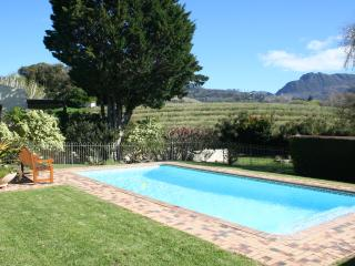 Swimming pool with garden, vineyard and mountain views