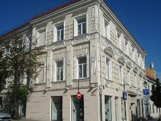 Modern 1BR Old Town Apartment, Vilna