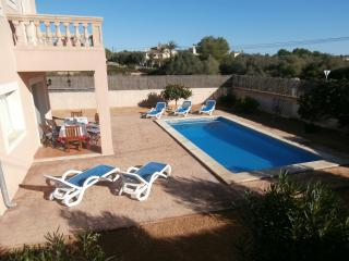 Pool 8 x 4 metres with Loungers
