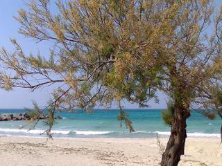 Lecce - Via IV Novembre
