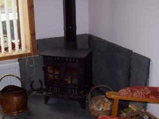 Log burner located in lounge