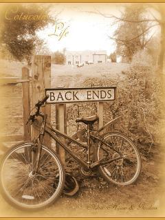 Back Ends