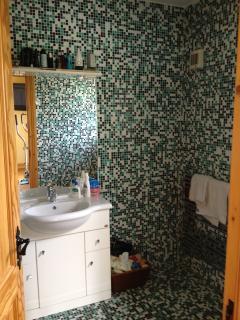 master en suite, with rain forest shower.