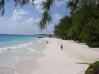 Enjoy the beautiful beaches in Barbados