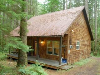 Lovely Cabin In the Woods w/ Covered Porch #12, Glacier