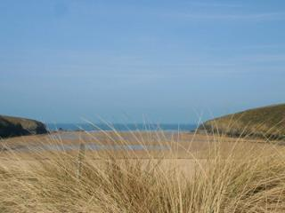 Porthcothan Bay - the dog can run for hours and the children can explore rock pools & caves.