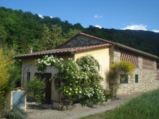 Il Cielo Bio-Organic B&B-Garden with kitchenette-Italian classes-Shiatsu-Relax