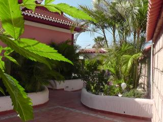 Casa Palmera near the beach, Los Abrigos
