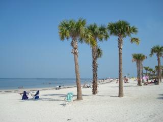 Lakeside Apartment Near Clearwater Beaches