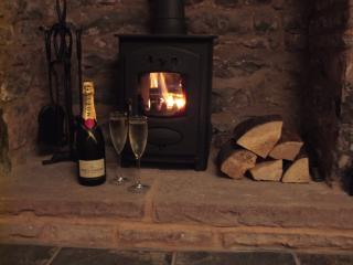 Snuggle up in front of the woodburner!