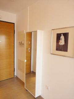 Entrance door and shoe closet