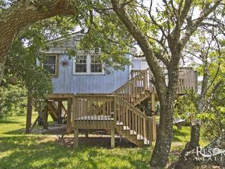 Carrie's Treehouse, Avon